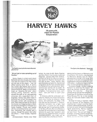 Harvey Hawks - Badlands Skateboards at Sk8Kings.com